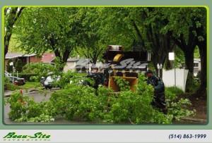beau-site-paysagiste-Camion_Emondage-Rue-Laval